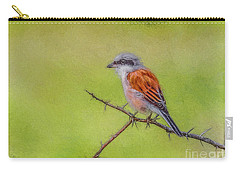Red-backed Shrike Carry-all Pouch