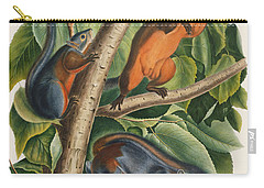 Red Bellied Squirrel  Carry-all Pouch by John James Audubon