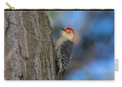 Red-bellied Wodpecker 3 Carry-all Pouch
