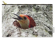 Red-bellied Woodpecker 02 Carry-all Pouch by Al Powell Photography USA