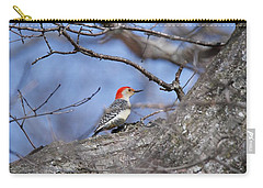 Carry-all Pouch featuring the photograph Red-bellied Woodpecker 1134 by Michael Peychich