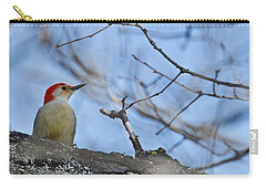 Carry-all Pouch featuring the photograph Red-bellied Woodpecker 1137 by Michael Peychich