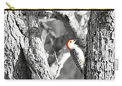 Carry-all Pouch featuring the photograph Red-bellied Woodpecker by Benanne Stiens
