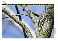 Carry-all Pouch featuring the photograph Red-bellied Woodpecker by Gary Wightman