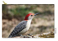 Red-bellied Woodpecker Carry-all Pouch by Sheila Brown