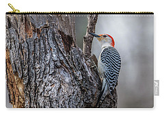 Carry-all Pouch featuring the photograph Red Bellied Woody by Paul Freidlund