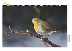 Red-breasted Robin Carry-all Pouch