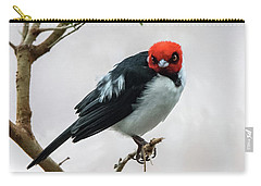 Red Capped Cardinal Carry-all Pouch