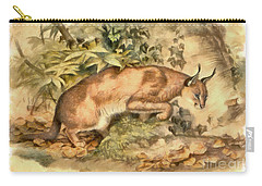 Red Caracal Carry-all Pouch by Sergey Lukashin