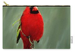Red Cardinal Painting Carry-all Pouch