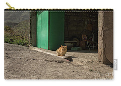 Red Cat And Green Shed Carry-all Pouch by Patricia Hofmeester