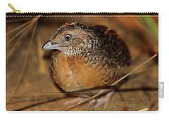 Red-chested Button-quail Carry-all Pouch