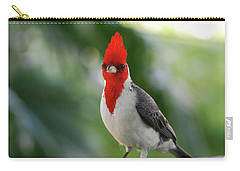 Red Crested Cardinal Bird Standing On A Railing Carry-all Pouch by DejaVu Designs