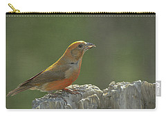 Red Crossbill Carry-all Pouch by Constance Puttkemery