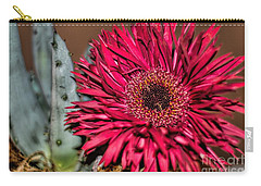 Carry-all Pouch featuring the photograph Red Daisy And The Cactus by Diana Mary Sharpton