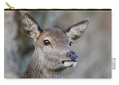 Carry-all Pouch featuring the photograph Red Deer Hind - Scottish Highlands by Karen Van Der Zijden