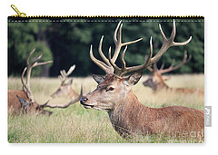Red Deer Stags Richmond Park Carry-all Pouch