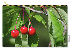 Carry-all Pouch featuring the photograph Red Delicious by Kennerth and Birgitta Kullman