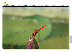 Red Dragonfly At Lady Buddha Carry-all Pouch