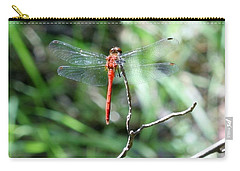 Carry-all Pouch featuring the photograph Red Dragonfly by Karen Silvestri