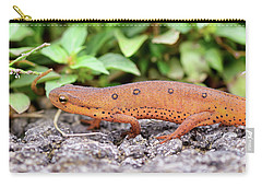 Red Eft - Close Up Carry-all Pouch by Kerri Farley