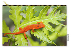 Red Eft Eastern Newt Carry-all Pouch by Christina Rollo