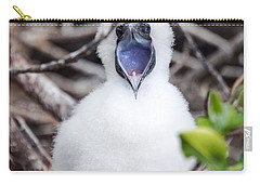 Red Footed Booby Chick Carry-all Pouch by Jess Kraft