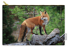 Red Fox 4 Carry-all Pouch by Gary Hall