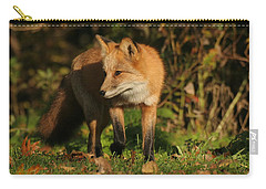 Carry-all Pouch featuring the photograph Red Fox by Doris Potter