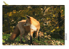 Carry-all Pouch featuring the photograph Red Fox In Shadows by Doris Potter