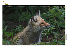 Red Fox In The Forest Carry-all Pouch