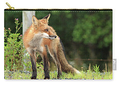 Red Fox In The Rain Carry-all Pouch