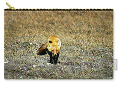 Carry-all Pouch featuring the photograph Red Fox On The Tundra by Anthony Jones