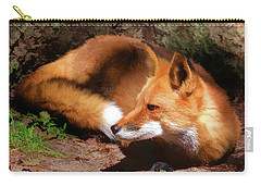 Red Fox Resting Square Carry-all Pouch