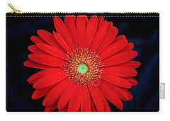 Carry-all Pouch featuring the photograph Red Gerber Daisy On Black by Sheila Brown