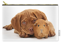 Red Guinea Pig And Dogue De Bordeaux Carry-all Pouch