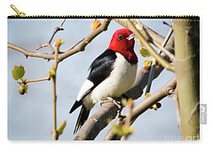 Red-headed Woodpecker At A Glace  Carry-all Pouch by Ricky L Jones