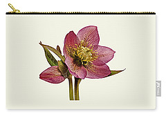 Red Hellebore Cream Background Carry-all Pouch
