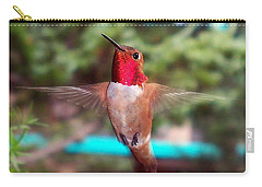 Red Hummingbird Carry-all Pouch by Joseph Frank Baraba