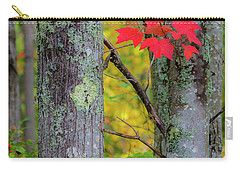 Carry-all Pouch featuring the photograph Red Leaves by Gary Lengyel