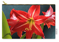 Red Lily Flower Trio Carry-all Pouch