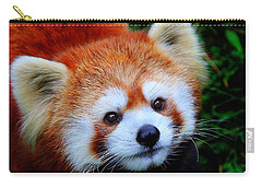 Carry-all Pouch featuring the photograph Red Panda by Davandra Cribbie