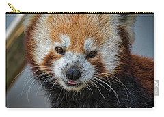 Red Panda Portrait Carry-all Pouch