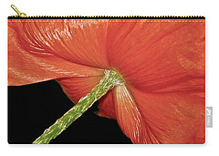 Red Poppy Flower On Black Background Carry-all Pouch by Carol F Austin