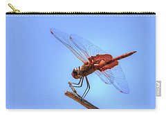 Red Saddlebag Dragonfly Carry-all Pouch