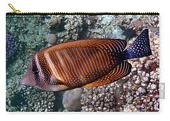 Red Sea Sailfin Tang 3 Carry-all Pouch