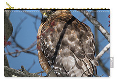 Carry-all Pouch featuring the photograph Red Shouldered Hawk 2017 by Bill Wakeley