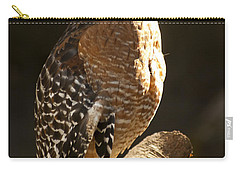 Red-shouldered Hawk Carry-all Pouch