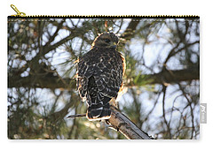 Red Shouldered Hawk Fledgling Carry-all Pouch