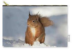 Carry-all Pouch featuring the photograph Red Squirrel In The Snow by Karen Van Der Zijden